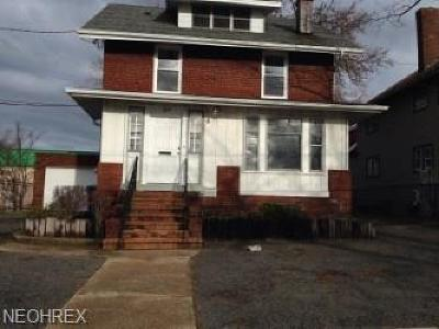 Painesville Single Family Home For Sale: 127 South Saint Clair St