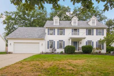 Medina Single Family Home For Sale: 1121 Oak St
