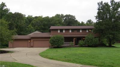 Hinckley Single Family Home For Sale: 1884 Ridge Rd