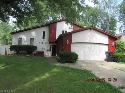 Elyria Single Family Home For Sale: 928 Howard St