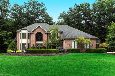 Brecksville, Broadview Heights Single Family Home For Sale: 8769 Wood Wind Ct