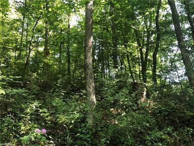 Guernsey County Residential Lots & Land For Sale: Yellow Water Rd