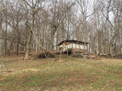 Single Family Home For Sale: 12805 North Pike Rd