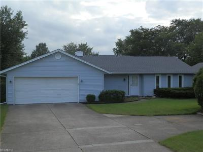 Strongsville Single Family Home For Sale: 19581 Westwood Dr
