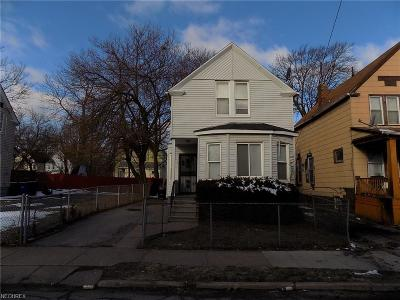 Cleveland Single Family Home For Sale: 1386 East 89th St