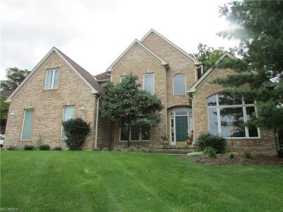 North Royalton Single Family Home For Sale: 7595 Harley Hills Dr