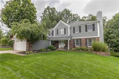 Strongsville Single Family Home For Sale: 18620 Saratoga Trl