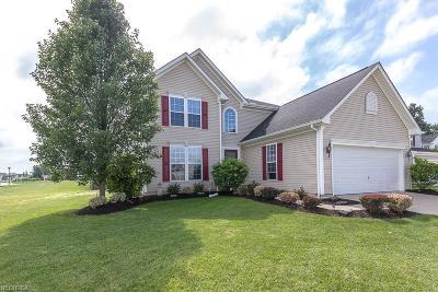 North Ridgeville Single Family Home For Sale: 6276 West Breezeway Dr