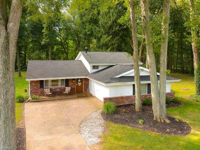North Ridgeville Single Family Home For Sale: 6684 Pitts Blvd
