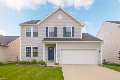 North Ridgeville Single Family Home For Sale: 6773 Majestic Dr