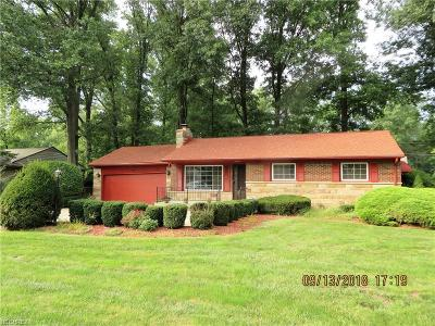 Westlake Single Family Home For Sale: 28000 Bassett Rd