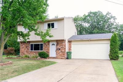 Eastlake Single Family Home For Sale: 141 Paxton Rd