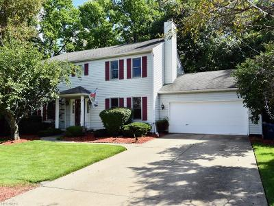 Strongsville Single Family Home For Sale: 13171 Hollo Oval