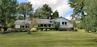 Brecksville, Broadview Heights Single Family Home For Sale: 8790 Cranberry Rdg
