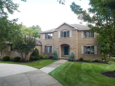Brecksville, Broadview Heights Single Family Home For Sale: 9745 Shenandoah Dr