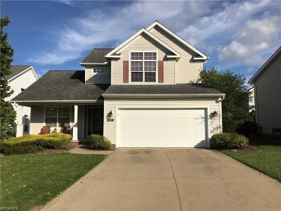 Broadview Heights Single Family Home For Sale: 1387 Apple Valley Ct