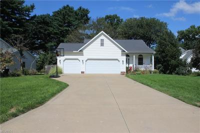 Painesville Single Family Home For Sale: 235 Overlook Rd