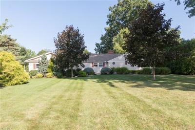 Wickliffe Single Family Home For Sale: 29703 Grand Blvd