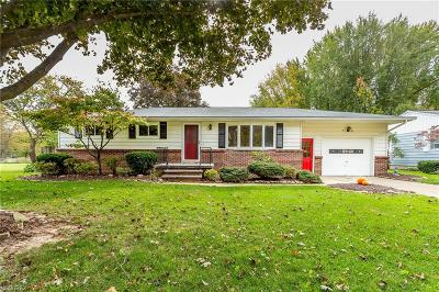 Elyria Single Family Home For Sale: 42835 Galaxy Dr