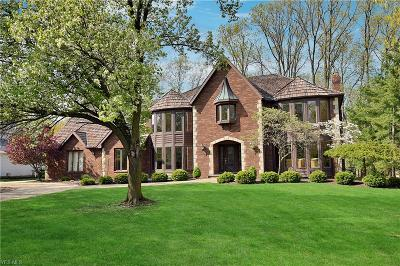 Brecksville, Broadview Heights Single Family Home For Sale: 180 Countryside Dr