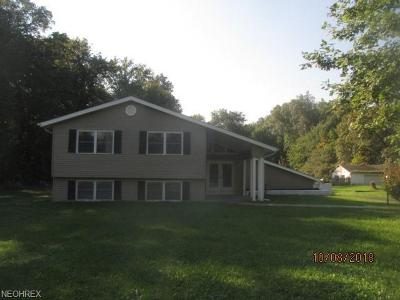 Olmsted Township Single Family Home For Sale: 27379 Bagley Rd