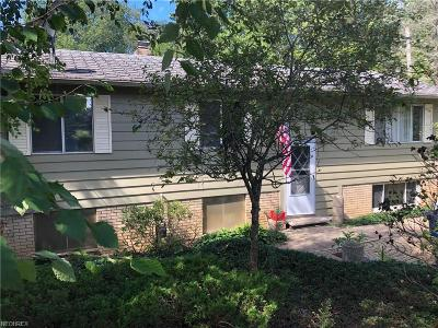Olmsted Falls Single Family Home For Sale: 8638 Lewis Rd