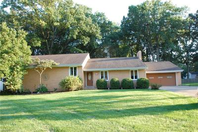 Canfield Single Family Home For Sale: 245 Moreland Dr