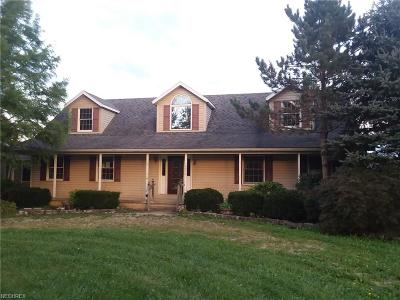 Geauga County Single Family Home For Sale: 19003 Tilden Rd