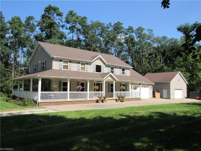 Summit County Single Family Home For Sale: 9709 Chamberlin Rd