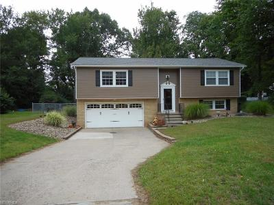 Painesville Single Family Home For Sale: 2501 Southwood Rd