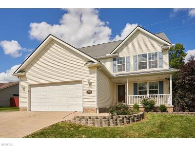 Ravenna Single Family Home For Sale: 3189 Pine Hollow Dr