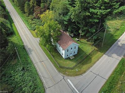 Geauga County Single Family Home For Sale: 19032 Mumford Rd