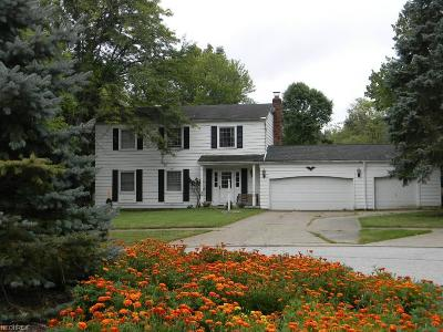 Brecksville, Broadview Heights Single Family Home For Sale: 3409 Elm Brook Dr