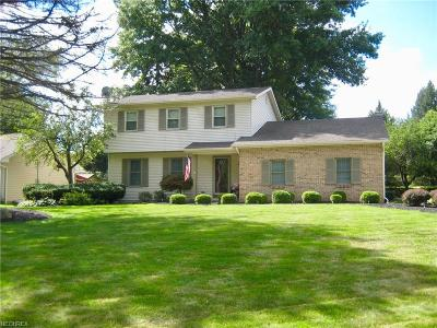 Canfield Single Family Home For Sale: 6160 Tippecanoe Rd