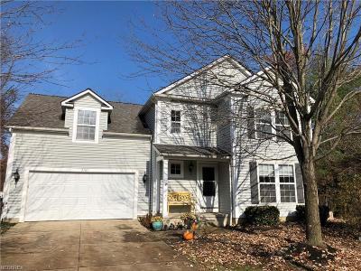 Summit County Single Family Home For Sale: 2165 Dorset Ln