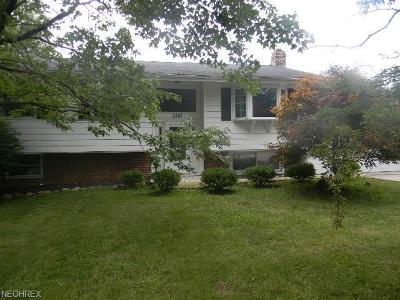 Geauga County Single Family Home For Sale: 7381 Hillendale Rd
