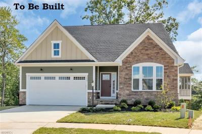 Lake County Single Family Home For Sale: 77 Ranally Way