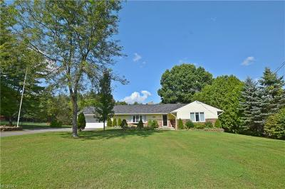 Hinckley Single Family Home For Sale: 1805 Mattingly Rd