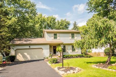 Boardman Single Family Home For Sale: 6820 Lockwood Blvd