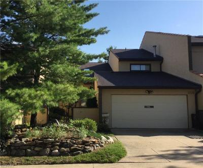 Summit County Condo/Townhouse For Sale: 1728 Brookwood Dr
