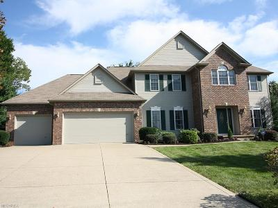 Medina Single Family Home For Sale: 3004 Arielle Ct