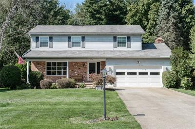 Summit County Single Family Home For Sale: 5818 Holland Dr