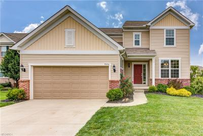 Strongsville OH Single Family Home For Sale: $295,000