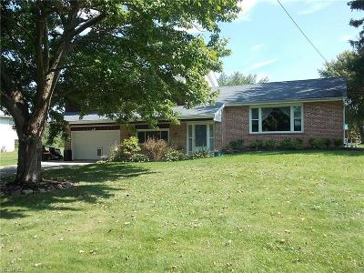 Wadsworth Single Family Home For Sale: 8925 Kane Rd