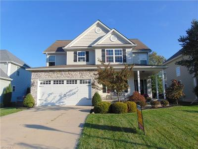 Painesville OH Single Family Home For Sale: $249,900