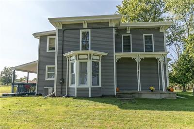 Medina OH Single Family Home For Sale: $246,000
