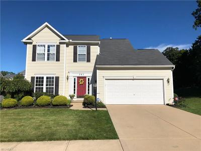 Copley Single Family Home For Sale: 267 Misty Ln