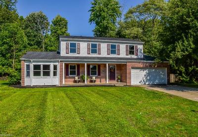 Summit County Single Family Home For Sale: 647 Stafford Dr