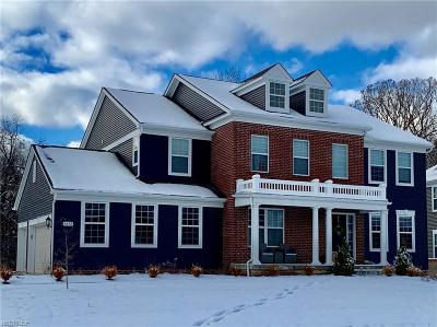 Summit County Single Family Home For Sale: 5672 Timberline Trl
