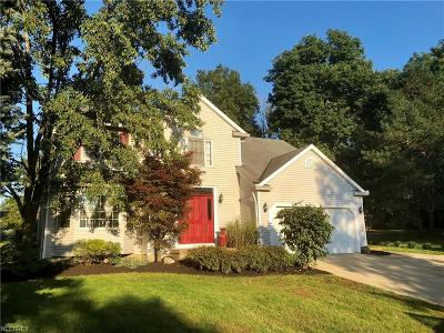 Summit County Single Family Home For Sale: 675 Greenwood Ct